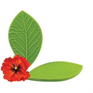 California Poppy Leaf Veiner by James Rosselle