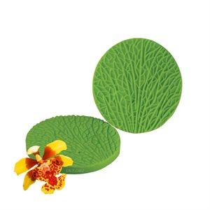 Oncidium Orchid Petal Veiner by James Rosselle